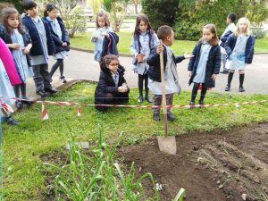 Trasplantes de semillas en el huerto escolar